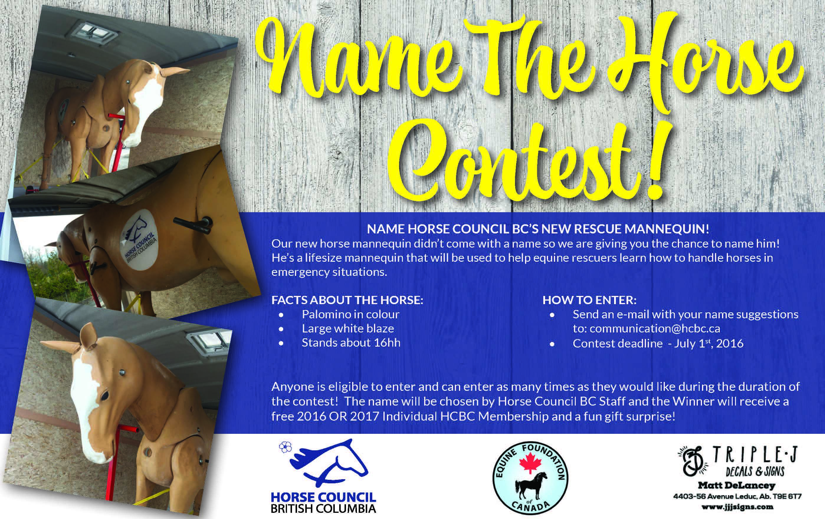 Name The Horse Contest Ad